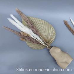 천연 꽃 부케 홈 장식 아마존 최고의 아마존 상품 베스트 아마존 상품 판매