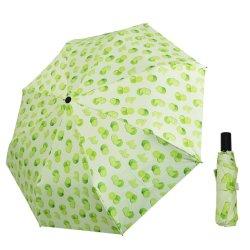 Sonnenschutz Mädchen Schöne 3 Faltbare Regenschirm Frau Regen Handbuch Öffnen und Schließen
