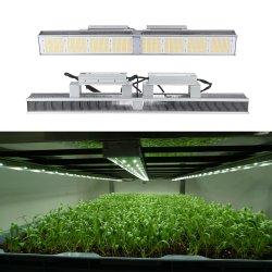 Volles Spektrum 2.7umol/J 640W LED wachsen für grünes Haus-Pflanzen hell