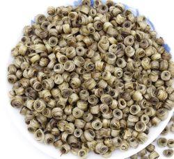 Folhas soltas de flores de jasmim chinês Jasmine Anéis Jade China Artesanato Chá Verde