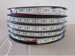 L'éclairage pour House/Shop/Panneaux de signalisation LED CMS Décoration avec bande de corde souple