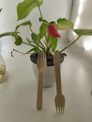 ロゴのカスタマイズ使い捨て木製スプーンのフォーク