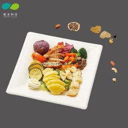 100% Biodegrable blanco de papel cuadrado de las placas de merienda fruta alimentos