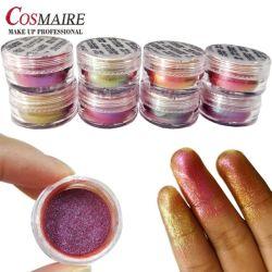 Usine de maquillage de gros Chameleon Pigment Poudre pour Ombre à paupières