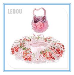 Neuer Form-Ballkleid-Kind-Baby-Tanz-flaumige Ballettröckchen-Fußleisten-Fantasie-Ballett-Kostüm-Fußleisten-Partei-Abnützung