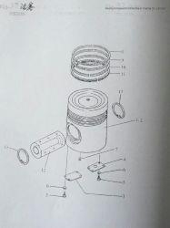 Zuigerveer voor Mariene Dieselmotor 6n330 Yanmar