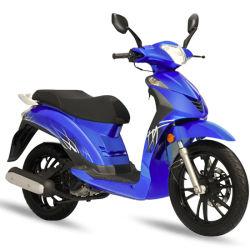 Китай 16-дюймовые колесные Euro 4 49cc 50cc 2 цикл системы Delphi Efi мотоциклов EEC мопед двигатель 125 cc 150 куб газа для скутера