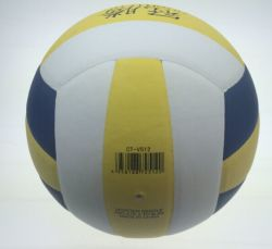 Le volley-ball, Volleyballs professionnel