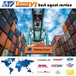 Океан транспорт / Морское Пароходство / логистических услуг из Китая в Нагою Японии