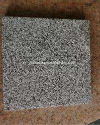 Mattonelle grige scure naturali del granito della pietra G654 per il paracarro/lastricatori/parete/pavimento decorativo