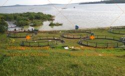 HDPE Viskwekerij van de Kooi van het Kweken van vis van de Aquicultuur De Netto Drijvende Cirkel en Vierkante
