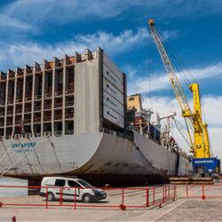 Logistischer Service von China nach die Rotterdam-Niederlande