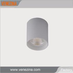 360 Degré plan horizontal conduit de lumière au plafond avec pilote TUV COB Downlight LED 6 W