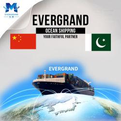 Berufsseefracht-Verschiffen-Service von China nach Pakistan/Karachi