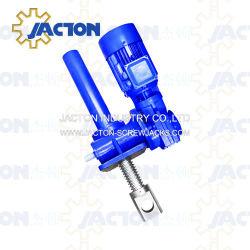 Beste Elektro Lineaire Actuator, de Hefboom van de Schroef van het Paar van de Schroef met de Fabrikanten van het Reductiemiddel van de Worm