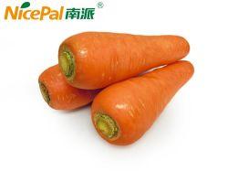 Natürliches spraygetrocknetes Karotte-Gemüsesaft-Puder