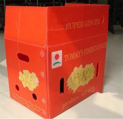 PP 접을 수 있는 물결 모양 플라스틱 음식 Garde 수송용 포장 상자 상자