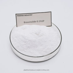高品質自然なPgr Brassinolide 0.1%Sp