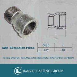 Galvanied bagués en fonte malléable Raccords de tuyaux de fer de 529 Prises mâle et femelle