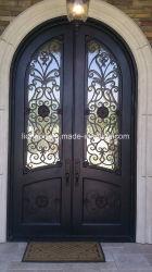 Оптовая торговля двери из кованого железа для вилла специального проекта