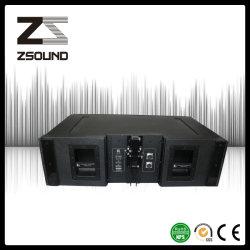 직업적인 선 배열 오디오 스피커