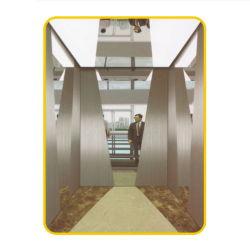 Heißer Verkaufs-preiswertes Höhenruder/Aufzug-Aufzugskabine