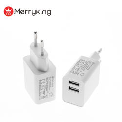 Tragbarer USB-Ladeanschluss 5 V 2 A Micro-USB-Ladegerät Wandstecker Typ C Mini-USB-Ladegerät für Mobiltelefon