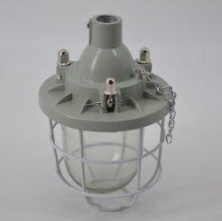 Simva UL Взрывозащищенный лампа уровня защиты Холодный белый Взрывозащищенный энергосберегающие люминесцентные лампы