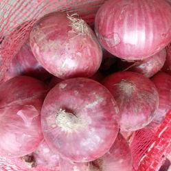 Neues Getreide-chinesische frische rote Zwiebel für Verkauf