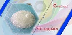 Revêtement en poudre des produits chimiques de la résine de polyester de durcissement Tgic