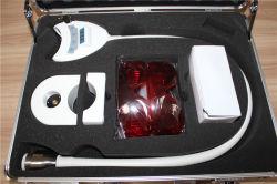 Suministro Dental nueva portátil de 36W Lámpara de blanqueamiento dental Blanqueamiento Dental el blanqueamiento de dientes de la máquina dispositivo