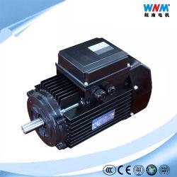 Motore a tre fasi di piccola dimensione astuto 1.5kw 2HP del motore elettrico di CA di controllo di velocità eccellente Ie2 & Ie3 di alta efficienza