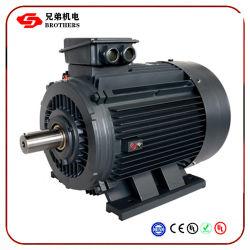 30квт 22квт 15квт 7.5kw 380V 660V IP55 три этапа большая мощность АС индуктивные асинхронный электродвигатель Y Y2 Yx Y3 Ye Ye2 Ye3 Yk Анп серии Stantard IEC
