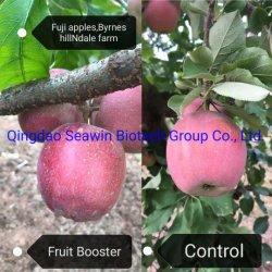 Фрукты, 45% водоросли полисахаридов дополнительные с натуральным зеленым водорослей, 100% Водорастворимые водоросли органических удобрений для овощей фрукты цветы