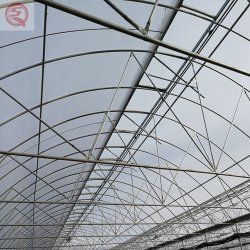 Haut Tunnel économique 100/150/200 microns du film plastique serre avec micro-pulvérisation/les systèmes hydroponiques