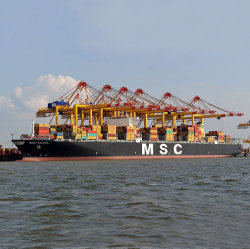 Servizio di trasporto professionale di trasporto marittimo dalla Cina a Port Auckland Della Nuova Zelanda
