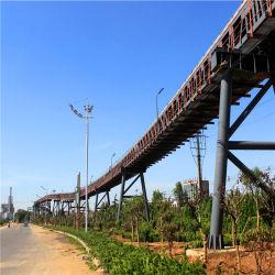شركة تصنيع أسعار الناقلات ذات السير الفولاذية طويلة العمر للتعدين/الميناء/الطاقة الصناعات النباتية