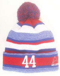 Высокое качество вышивкой из жаккардовой ткани теплых Beanie Red Hat полосой колпачки (S-1071)