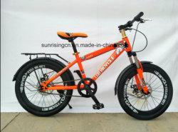 2018 Ventes chaud/enfants vélo Vélo/kids 20 pouces de vélo avec frein à disque Sr-Kb139