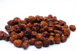 Свежие фрукты Jujube Финики/закусочный продовольственной