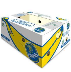 Custom Ab-Flute frutos de banana Caixa de papelão de embalagem padrão