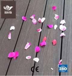 Le WPC Co-Extrusion en plastique en bois Composite Decking Conseil pour la Cour