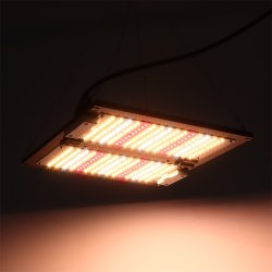 ينمو [120و] [لد] خفيفة لأنّ [إيندوور بلنت], بستنة ضوء لأنّ داخليّ يزرع, [ديمّبل] [لد] ضوء, [أول], [روهس]