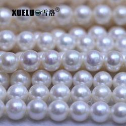 좋은 품질 자연적인 경작된 민물 진주, 중국 (XL180104)에 있는 진주 농장의 둘레에 아주 9-10mm AAA