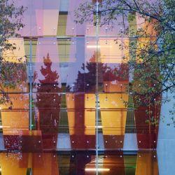 Slikscreen ha stampato il vetro laminato per la parete di vetro interna che decora
