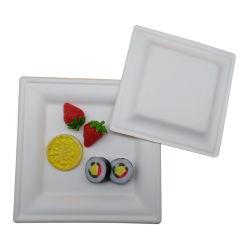Insiemi biodegradabili del piatto di pranzo del documento della canna da zucchero di alimento degli articoli per la tavola concimabili del contenitore