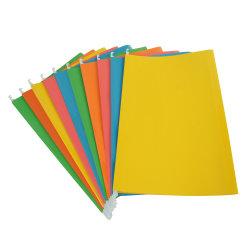Colgantes de colores mezclados titulares de las carpetas de archivos de la suspensión F/C