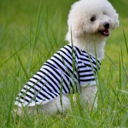 De gestreepte Overhemden van de Hond van de Zomer van de Kleren van de Hond voor het Kleine Middelgrote Product van de Kleding van het Huisdier van Honden