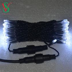 クリスマスの標識燈が付いている屋外の白LEDランプワイヤーストリング
