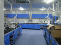 튼튼한 화학 저항하는 물리학 화학 실험실 가구 과학 실험실 벤치